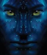 pieter's Avatar